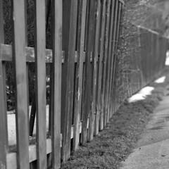 Milton - March 2013 (.:Axle:.) Tags: bw ontario canada slr 6x6 film lamp square town blackwhite kodak random tmax walk 14 bronica squareformat milton randoms kodaktmax400 filmphotography tmaxdeveloper sqai bronicasqai 400tmy2 believeinfilm zenzanonps150mm14