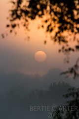 Sunrise from bedroom window (bertie.carter.photography) Tags: sunrise lewes misty fog beautiful perfect yellowhue