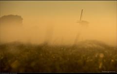 Schimmenspel (Peterbijkerk.eu Photography) Tags: mist windmill nevel nederland nl molen noordholland schermerhorn zonsopkomst peterbijkerkeu
