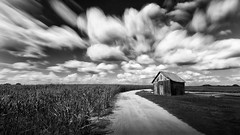 Corn Field With Leaning Shed (shutterclick3x) Tags: farm countryside rural ruralgeorgia corn field blackandwhite bw backroads landscape longexposure frankloose