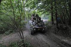 _DSC5986 (Piriac_) Tags: char chars tank tanks tanksintown mons asaltochar charassault charangriff  commemoration batailledemons liberationdemons