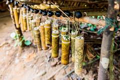 Malaysia_Taman_Negara_34 (Toma.Marinov) Tags: orang asli village taman negara rain forest malaysia