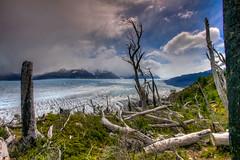 Glaciar Grey (macsbruj) Tags: chile patagonia torresdelpaine glaciar glacier hdr lightroom landscape paisaje paisagem