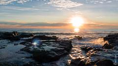P1140555 (Pursuedbybear) Tags: alexandraheadland sunshinecoast beach sunrise