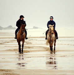 Sand runners. (pstone646) Tags: horses riders women people sea shore sussex reflections