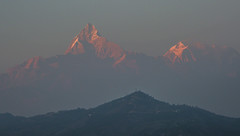 Fishtail peak at sunset (sequoiaseed) Tags: mountains nepal himalayas fishtail sunset fog peaks landscapes