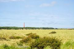 Ameland (Herman1705) Tags: hollum friesland nederland ameland waddenzee hollumfrieslandnederland vuurtoren lighthouse laowa 60mm