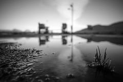 Friday rush hour (knutmsa) Tags: ferrylanding bw blackwhite shallowdof reflection pool nostalgic samyang 12mmf2 xt1 fujifilm fergekai