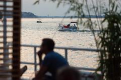 NKRS5431 (pristan25maj) Tags: green pristan pristan25maj brodovi boats reka river dunav danube photonemanjaknezevic nkrs