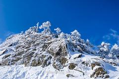 Harry_30831,,,,,,,,,,,,,,,,,,,,,,,Hehuan Mountain,Taroko National Park,Snow,Winter (HarryTaiwan) Tags:                       hehuanmountain tarokonationalpark snow winter mountain     harryhuang   taiwan nikon d800 hgf78354ms35hinetnet adobergb