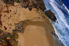 Day 16 (SXN) Tags: ocean california ca sea cliff bird beach water rock digital canon river landscape flow outdoors eos rebel big kiss stream seagull gull tide salt scenic wave x squid shore foam pierce sur meet froth brackish sxn xti soracco 400d piercesoracco 2013piercesoracco piercesoraccocom