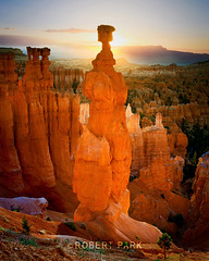 """First Light"" Bryce Canyon National Park, Utah By Robert Park  http://www.robert-park.com (Robert Park Photography) Tags: california travel vegas trees lighthouse art tourism nature racetrack wonder point landscape photography death nationalpark gallery photographer natural lasvegas nevada fineart soho galleries national valley collectors naturalwonders fineartphotography wolfe macrophotography autofocus pigeonpointlighthouse lasvegasstrip horseshoebend striplas thepalazzo lasvegasshopping awesometrees robertpark simplysuper theshoppesatthepalazzo ""flickraward photoenlargements photographycollectors mygearandme mygearandmepremium mygearandmebronze dblringexcellence flickrbronzetrophygroup tplringexcellence ""californiatnc11"" photocontesttnc12 dailynaturetnc12 rememberthatmomentlevel1 robertbpark naturalwondersgallery theshoppesatthepalazzonevadagallery httpwwwrobertparkcom robertparkcom vigilantphotographersunite"