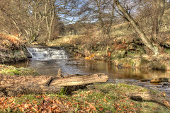 Hawnby Waterfall...IMG_8572.jpg (Katybun of Beverley) Tags: trees waterfall yorkshire hdr yorkshiremoors hawnby