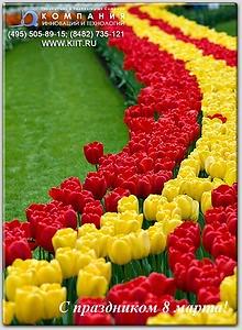 Любимые с праздником 8 марта!