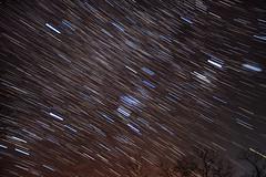 Winter Star Trails (HubbleColor {Zolt}) Tags: sky night stars timelapse astro fieldtrip sirius orion jupiter pleiades hyades astrometrydotnet:status=failed astrometrydotnet:id=alpha20130353241680