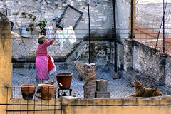 Neighbours 3 (Laundry Day) (Carl Campbell) Tags: woman rooftop mexico laundry washing quertaro santiagodequertaro