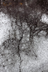 Hlyd Monath: Tears (jnm_ua) Tags: trees snow cold window nature glass yard march tears frosty icy earlyspring behindtheglass frozenrain frozenraindrops stormymonth hlydmonath