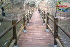 Crecida Ro Duero (Historia de Covaleda) Tags: espaa spain fiesta paisaje douro pinos soria historia pinar tradicion duero covaleda