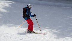 Free rider (for God's sake...all your weight forward!) (Diane Northman) Tags: red snow sticks helmet wintersports freeriderskiing