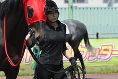 20130405-_DSC5373 (Fomal Haut) Tags: horse japan nikon nagoya 80400mm d4   14teleconverter  d800e