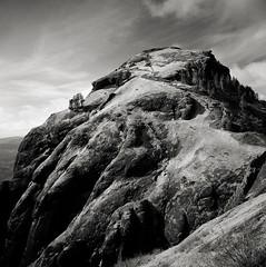 return to saddle mountain (manyfires) Tags: summer blackandwhite bw film oregon analog square landscape hiking hike hasselblad trail pacificnorthwest pnw hasselblad500cm saddlemountain