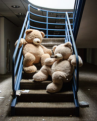 SMDSC_0101 (thetiffers) Tags: abandoned left behind explored abandon desolate america vacant lost place old rotten decay ruin urban ruin derelict ue explorer nikon forgotten exploration neglected death united states empty waste decay usa office corporate teddybear lifesize cuddly
