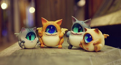 09 () Tags: bjd kitten cyclops