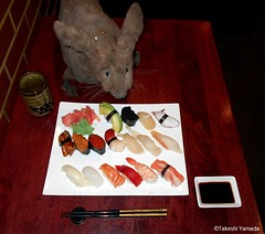 Dr. Takeshi Yamada and Seara (Coney Island Sea Rabbit) at the Sake Japanese sushi buffet restaurant in Brooklyn, NY on March 30, 2016.  20160330 Wed. 3 DSCN4845=3025C. assorted 17 sushi (searabbits23) Tags: searabbit seara takeshiyamada  taxidermy roguetaxidermy mart strange cryptozoology uma ufo esp curiosities oddities globalwarming climategate dragon mermaid unicorn art artist alchemy entertainer performer famous sexy playboy bikini fashion vogue goth gothic vampire steampunk barrackobama billclinton billgates sideshow freakshow star king pop god angel celebrity genius amc immortalized tv immortalizer japanese asian mardigras tophat google yahoo bing aol cnn coneyisland brooklyn newyork leonardodavinci damienhirst jeffkoons takashimurakami vangogh pablopicasso salvadordali waltdisney donaldtrump hillaryclinton polarbearclub