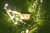 The aventures of Boxy (céline._.photographie) Tags: danboard danbo japanese figure amazon nikon nikond600 photography photo photographie photographer 18 50mm toys cute amazing light