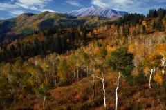 Mount Nebo (buddyboy38) Tags: autumncolors mouintnebo wasatchmountains peak tallest highest