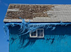 Blue Bangs (jim.choate59) Tags: rural decay ruraldecay abandoned house jchoate blue roof tarp torn window on1pics