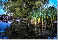 Another Beautiful Place (Sigpho) Tags: sigpho nikon nature
