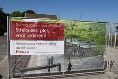 IMG_4025-www.PjotrWiese.nl