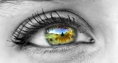 eyes604-003 (Nemo Sischi) Tags: occhi occhio eye eyes prato iride pupilla mascara sguardo striature casa fotografo cielo sky photographer bw