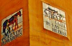 Azulejos de Herradores y Fuentes. Madrid (Carlos Vias-Valle) Tags: azulejo herradores