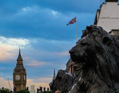 Big Ben from Trafalgar Square (chilipalermo) Tags: london cityoflondon londra londres uk trafalgarsquare trafalgar square lion nelson bigben clock