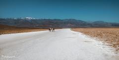 salt path (cherryspicks (intermittently on/off)) Tags: desert salt deathvalley california usa sand landscape travel people outdoor day mountain snow