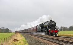 48151 Brindle (mike.online) Tags: railroad train canon eos transport rail railway steam locomotive backline steamlocomotive lms 8f londonmidlandscottish 48151 mikeonline