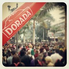 #Cuarentaprincipales y @cervezadorada en mejor  #carnaval del mundo de #tenerife con