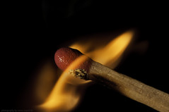 Fire (Sascha Gebhardt Photography) Tags: macro nikon photographers unite nikkor vigilant d300s mygearandme mygearandmepremium wwwsixpodde vigilantphotographersunite vpu2 vpu3 vpu4 vpu5 vpu6 vpu7 vpu8