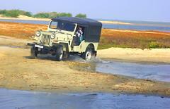 Mahindra Jeep on the beach Sands at Danushkodi - #02102013-IMG_7627a (photographic Collection) Tags: india beach canon sand ride jeep photographic collection 365 feb hdr tamilnadu bayofbengal mahindra sarma photomatix dhanushkodi 2013 550d kalluri t2i mahindramahindra photographiccollection bheemeswara bkalluri bheemeswarasarmakalluri