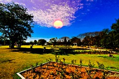 . (Rambonp love's all creatures of Universe.) Tags: pink blue trees wallpaper sky plants sun india white green leaves silhouette yellow clouds canon garden paradise resort agriculture punjab chandigarh parksectoe49chandigarh