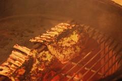 The ribs (marinade) got a bit scorched but it was tasty (gadgetgeek) Tags: ribs lamb bge biggreenegg rackoflamb fridaydinner lambribs shadybrookfarm frenchedbones