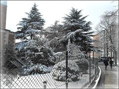 Paseando la ciudad :-)) (Lumiago) Tags: españa spain nieve burgos castillayleón befunky blinkagain rememberthatmomentlevel1 rememberthatmomentlevel2