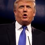 From flickr.com: Donald Trump {MID-61913}