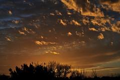 Tramonto romano (luporosso) Tags: sunset red sky italy cloud naturaleza roma nature clouds italia tramonto nuvole natura cielo rosso naturalmente