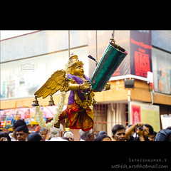 Flowers Showering Garudar -    (Sathish_Photography) Tags: india festival temple photography weekend photowalk chennai tamilnadu sathish cwc clickers mylapore kapaleeshwarar panguni mylaore garudar garudazhwaar peruvizha