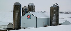 Swiss Barn Quilt (Images by MK) Tags: blue red orange white snow green wisconsin barn rural canon switzerland quilt farm swiss country farming silo silos agriculture wi whitebarn whitecross greencounty swisspower t2i barnquilt