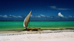 Tranquil beach (aruprayone) Tags: ocean sea beach sail zanzibar dhow