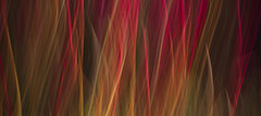Moments of Passion (V Photography and Art) Tags: red abstract colour green nature yellow movement flames flowing colourful icm intentionalcameramovement veeste vphotographyandart